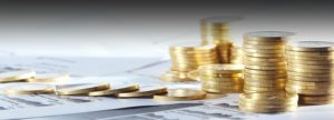 What is Authorized Capital and Paid-Up Capital in Balance sheet of a Company