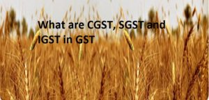 what-are-CGST-IGST-and-SGST-300x144