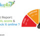 CIBIL Credit Report: What is CIBIL Score & How to check it online Free?